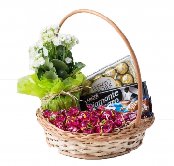 Cesta de Chocolate - 2334